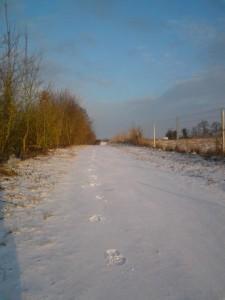 2010_02_11 Aller Boulot - Mes Traces dans la neige
